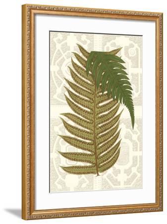 Garden Ferns II-Vision Studio-Framed Art Print