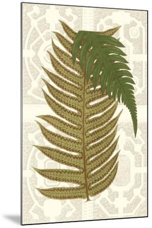 Garden Ferns II-Vision Studio-Mounted Art Print