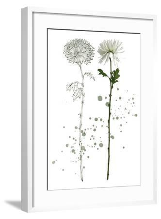 Botany Flower IV-Melissa Wang-Framed Art Print
