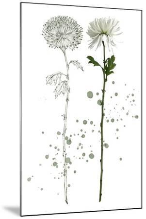 Botany Flower IV-Melissa Wang-Mounted Art Print