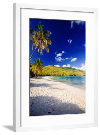 Sunny Morning in Magens Bay-George Oze-Framed Photographic Print