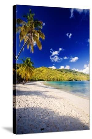 Sunny Morning in Magens Bay-George Oze-Stretched Canvas Print