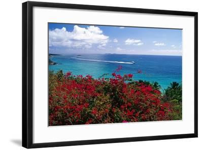 Frenchmans Bay Panorama St Thomas USVI-George Oze-Framed Photographic Print