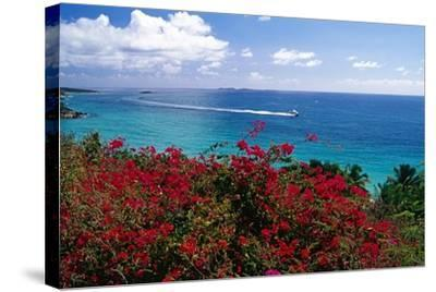 Frenchmans Bay Panorama St Thomas USVI-George Oze-Stretched Canvas Print