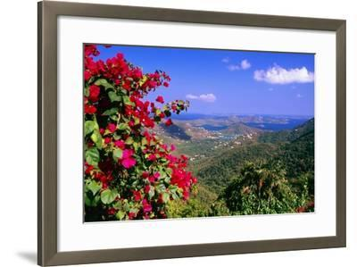 Coral Bay Panorama, St John, US Virgin Islands-George Oze-Framed Photographic Print