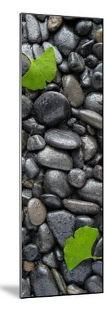 Black Stones And Ginko Leaves Vertical Panorama-Steve Gadomski-Mounted Photographic Print