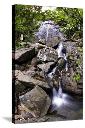 La Coca Waterfall, Puerto Rico-George Oze-Stretched Canvas Print