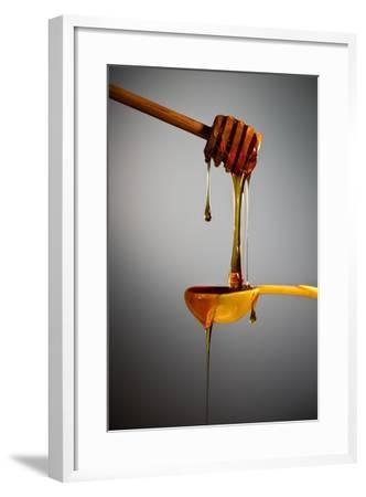 1 Tablespoon Honey-Steve Gadomski-Framed Photographic Print