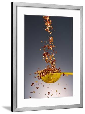 1 Tablespoon Red Pepper Flakes-Steve Gadomski-Framed Photographic Print