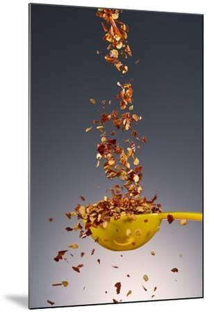1 Tablespoon Red Pepper Flakes-Steve Gadomski-Mounted Photographic Print