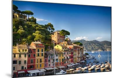 Colorful Harbor Houses in Portofino, Liguria, Italy-George Oze-Mounted Photographic Print