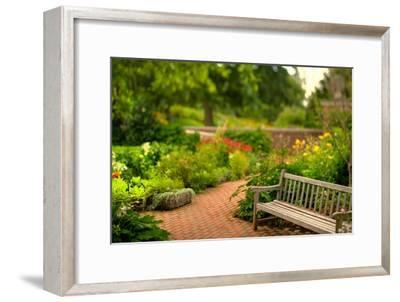 Chicago Botanic Garden Bench-Steve Gadomski-Framed Photographic Print
