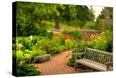 Chicago Botanic Garden Bench-Steve Gadomski-Stretched Canvas Print