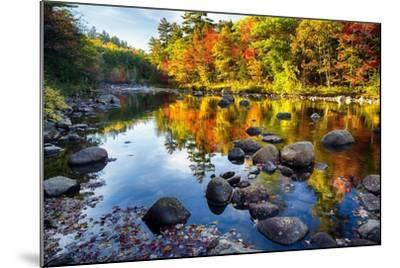 Colorful Trees Along the Swift River New Hampshire-George Oze-Mounted Photographic Print