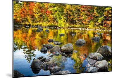 Autumn Foliage River Reflections-George Oze-Mounted Photographic Print