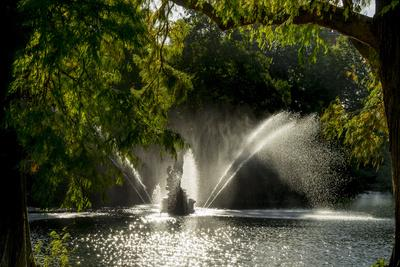Kew Lake 1-Charles Bowman-Framed Photographic Print