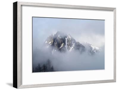 Mt Rainier National Park-Steve Gadomski-Framed Photographic Print