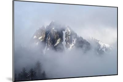 Mt Rainier National Park-Steve Gadomski-Mounted Photographic Print