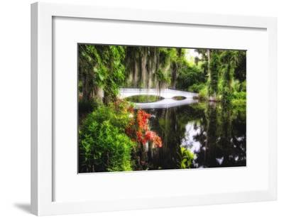 Little White Plantation Bridge-George Oze-Framed Photographic Print