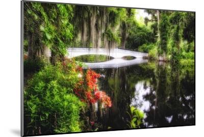 Little White Plantation Bridge-George Oze-Mounted Photographic Print