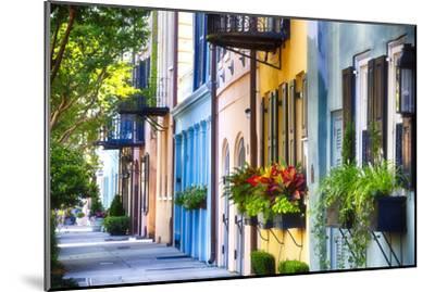 Rainbow Row I, Charleston South Carolina-George Oze-Mounted Photographic Print