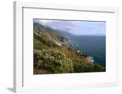 Big Sur Coast Springtime Vista, California-George Oze-Framed Photographic Print