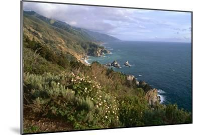 Big Sur Coast Springtime Vista, California-George Oze-Mounted Photographic Print