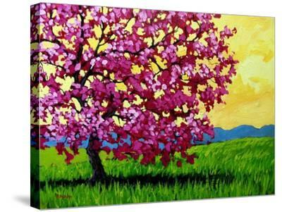 Pink Blossom Tree and Yellow Sky-Patty Baker-Stretched Canvas Print