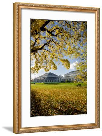 Kew Temperate House-Charles Bowman-Framed Photographic Print