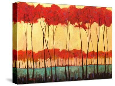 Tall Red Trees-Patty Baker-Stretched Canvas Print