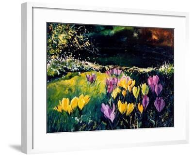 Crocusses-Pol Ledent-Framed Art Print