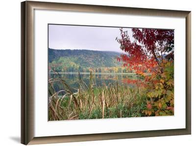Autumn Scenic, Acadia National Park, Maine-George Oze-Framed Photographic Print