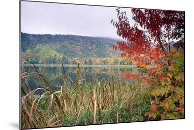 Autumn Scenic, Acadia National Park, Maine-George Oze-Mounted Photographic Print