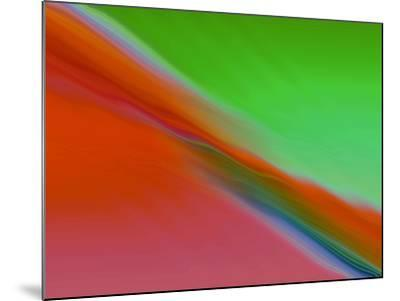 I See Color-Ruth Palmer-Mounted Art Print