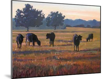 Foggy Morning Light-Patty Baker-Mounted Art Print