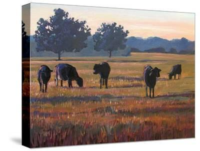 Foggy Morning Light-Patty Baker-Stretched Canvas Print