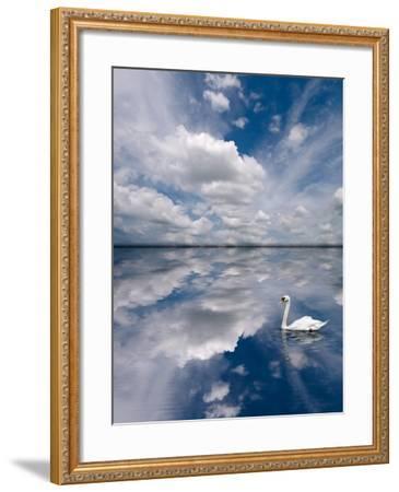 Swan Lake Explorations-Steve Gadomski-Framed Photographic Print