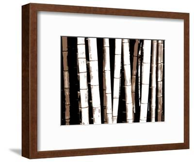 Enchanted Bamboo Brown-Herb Dickinson-Framed Art Print
