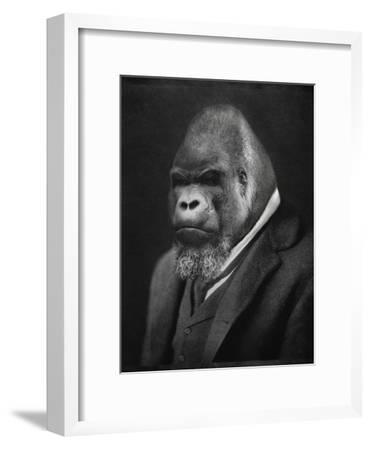 Mario Gorillini-Grand Ole Bestiary -Framed Art Print