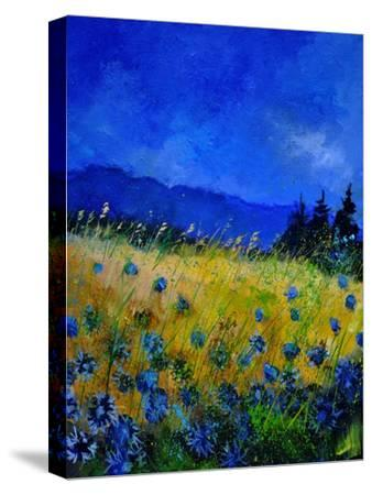 Blue Cornflowers 4550-Pol Ledent-Stretched Canvas Print
