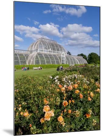 Kew Palm House-Charles Bowman-Mounted Photographic Print