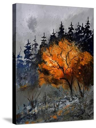 In The Wood 4551-Pol Ledent-Stretched Canvas Print