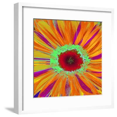 Pop Gerber II-Ricki Mountain-Framed Art Print
