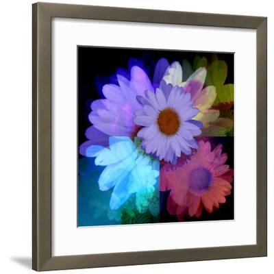 Daisies In Color-Ruth Palmer-Framed Art Print