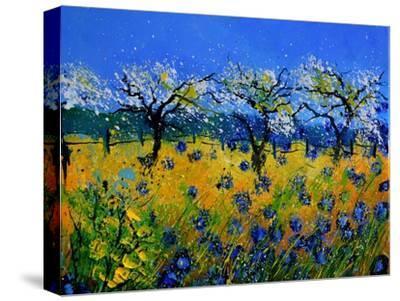 Blue Cornflowers 545130-Pol Ledent-Stretched Canvas Print
