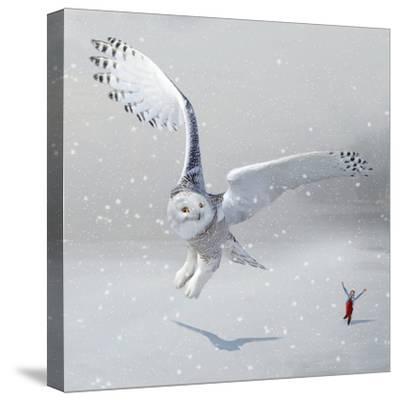 If You Were An Owl-Nancy Tillman-Stretched Canvas Print