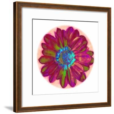 Flora Orb II-Ricki Mountain-Framed Art Print