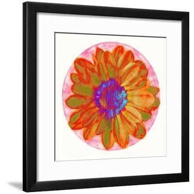 Flora Orb III-Ricki Mountain-Framed Art Print