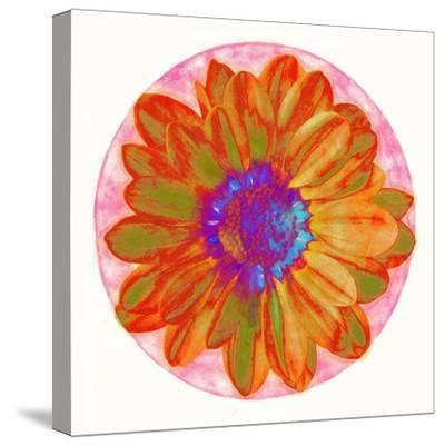 Flora Orb III-Ricki Mountain-Stretched Canvas Print