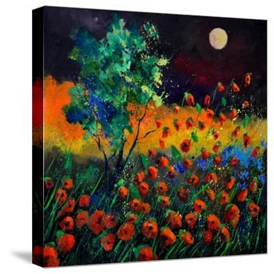 Red Poppies 774111-Pol Ledent-Stretched Canvas Print